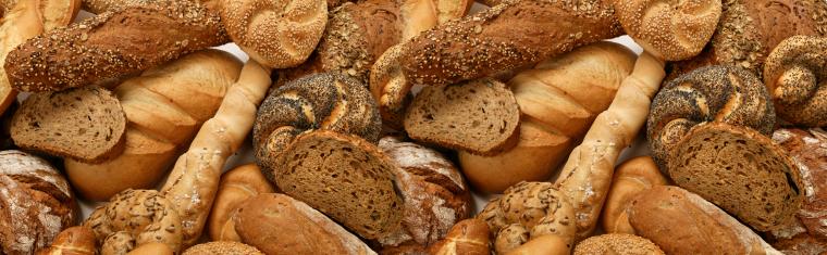 bakers insurance